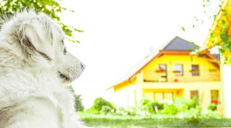lån til nyt hus