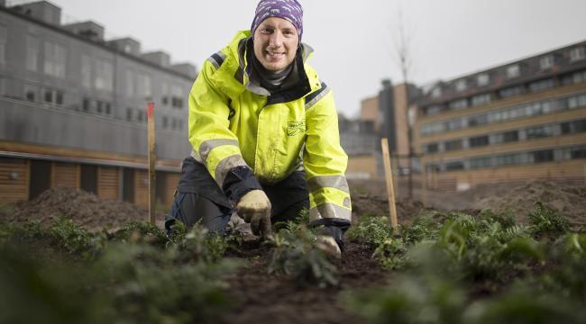 29-årige Mads Aarsdal er tillidsrepræsentant og har til sommer været ansat i 10 år hos anlægsgartner- og entreprenørfirmaet Sven Bech.